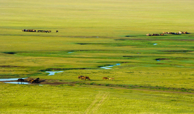 Discover Central Mongolia